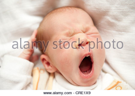 Portrait, yawning newborn girl with wide-open mouth - Stock Photo