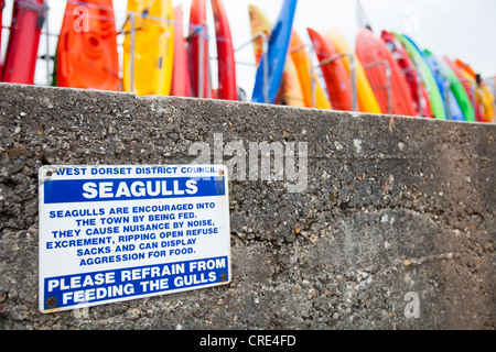 A sign about not feeding sea gulls on the sea wall at Lyme Regis, Dorset, UK. - Stock Photo