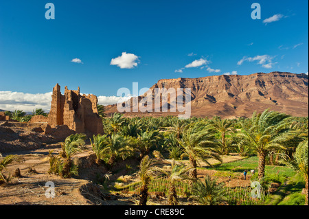 Ruinous Kasbah, constructed from adobe, residential castle of the Berbers, palm trees in front of the mountain chain - Stock Photo