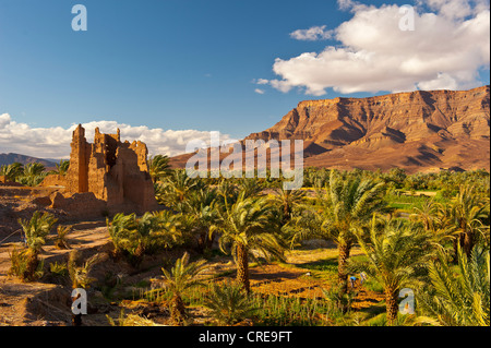 Ruined Kasbah, a former Berbers' residential castle built of adobe, and palm grove in front of the mountain range - Stock Photo