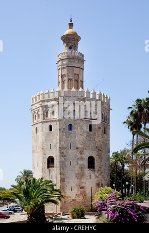Torre del Oro, Gold Tower, once part of the Moorish fortress, Seville, Andalucia, Spain, Europe - Stock Photo