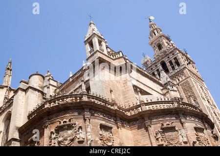 Giralda, bell tower of the Cathedral of Santa Maria, UNESCO World Heritage Site, Sevilla, Andalusia, Spain, Europe Stock Photo