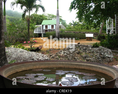 Old manor house on the Caribbean island of Nevis, Saint Kitts and Nevis, Nevis - Stock Photo