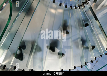 entrance of glass cube, Apple Retail Store, Fifth Avenue, USA, New York City, Manhattan - Stock Photo