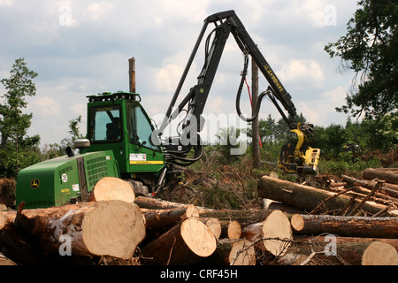 Norway spruce (Picea abies), harvester at work in a spruce stand, Germany, North Rhine-Westphalia, Sauerland - Stock Photo