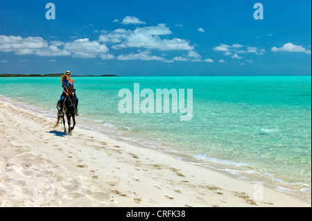 Horse rider troting on beach. Providenciales. Turks and Caicos.. - Stock Photo