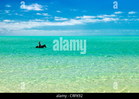 Horse riders in water. Providenciales. Turks and Caicos. - Stock Photo