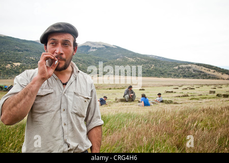 A man in a beret with a beard smokes a cigarette in a hayfield with four men taking a break in the mowed hay behind - Stock Photo