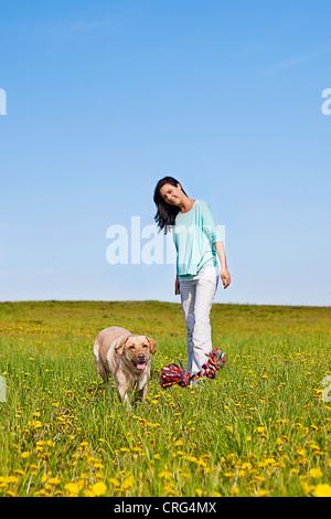 dog trainer teaching her puppil to retrieve - Stock Photo