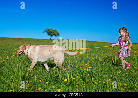 little girl on the walk with her dog - Stock Photo