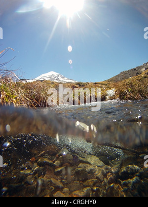 Pure snowmelt water flowing down the slopes of Volcan Lanin in spring, Parque Nacional Lanin, Patagonia, Argentina - Stock Photo