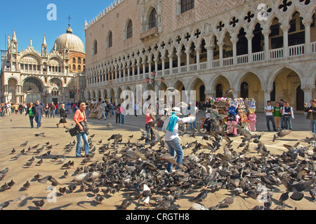 doves and tourists at St. Mark's Square in Venice, Italy, Venice - Stock Photo
