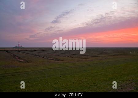 Westerheversand lighthouse and salt meadows at dusk, Westerhever, district of North Frisia, Schleswig-Holstein, - Stock Photo