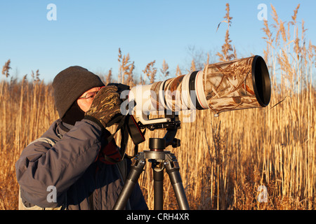 A wildlife nature photographer shooting with a super telephoto lens. - Stock Photo
