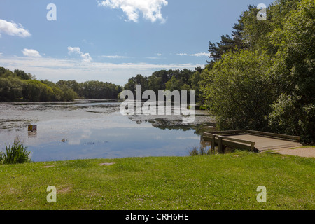 Landscape view looking out over lake and fishing platform - Stock Photo