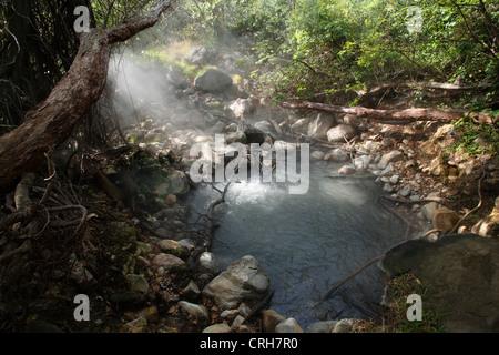 Volcanic fumarole in rainforest. Las Pailas trail, Rincon de la Vieja National Park, Guanacaste, Costa Rica. February - Stock Photo