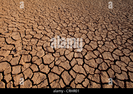 Cracked soil in Sarigua national park (desert), in the Herrera province, Republic of Panama. - Stock Photo