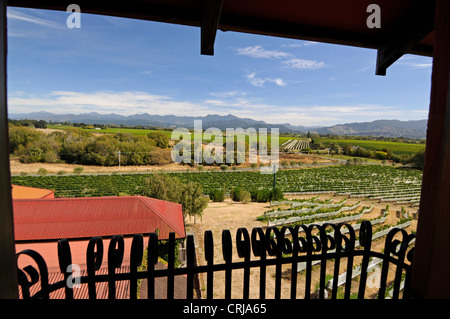 View of the Highfield wine estate and vineyards in Marlborough near Blenheim,New Zealand - Stock Photo