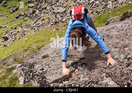 A female rock scrambler ascends a steep section of rock on a scramble (Rabbits Trod) up Gillercombe Crag, Lake District. - Stock Photo