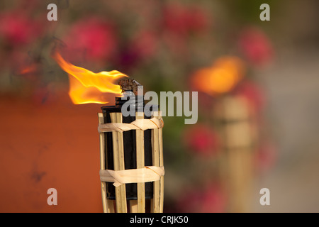 Flaming torch focused (another one at background). - Stock Photo