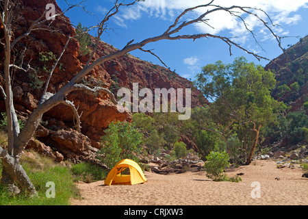 Camping in Redbank Gorge at the foot of Mt Sonder in the West MacDonnell Ranges - Stock Photo