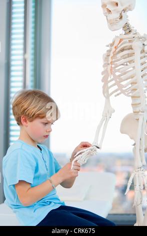 Boy examining skeleton at doctor - Stock Photo
