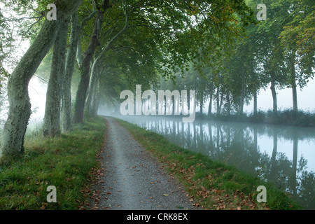the Canal du Midi nr Castelnaudary, Languedoc-Rousillon, France - Stock Photo