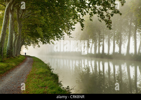 a jogger on the towpath of the Canal du Midi nr Castelnaudary, Languedoc-Rousillon, France - Stock Photo