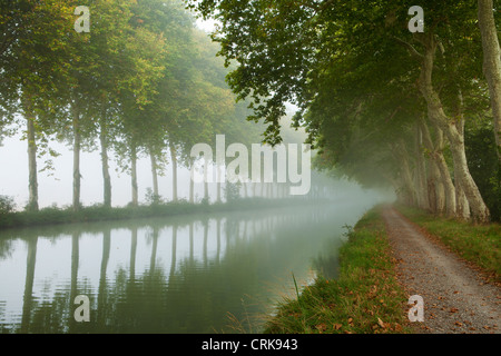 the Canal du Midi, nr Castelnaudary, Languedoc-Rousillon, France - Stock Photo