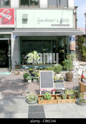 Flower Shop in Seoul, South Korea. - Stock Photo