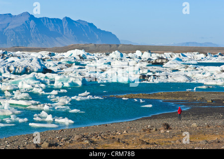 tourist visitor walking along the shore of the Jokulsarlon iceberg lagoon Iceland EU Europe - Stock Photo