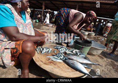 Women selling fish at the market in Elmina, Ghana - Stock Photo