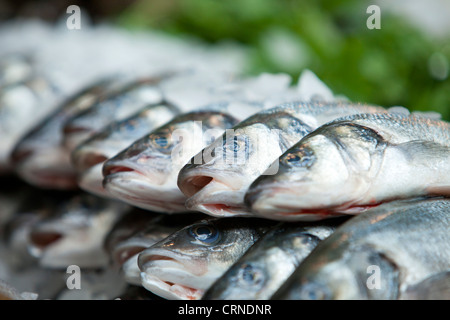 Fresh fish for sale in Borough Market. - Stock Photo