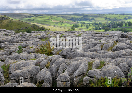 Limestone Pavement above Malham cove, formed by glacial retreat from the last ice age. - Stock Photo