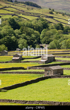 Stone Barns at Gunnerside Bottoms in Swaledale in the Yorkshire Dales National Park. - Stock Photo