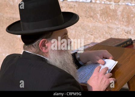 Orthodox Jew reads the Torah at the Old City's Western Wall, Jerusalem, Israel - Stock Photo