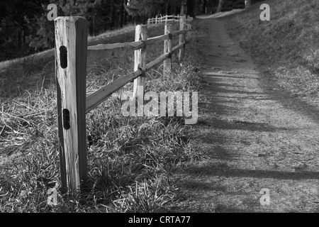 Shallow DOF image of Wood fenced path on the slope of a hil headed into the dark woods in black and white - Stock Photo