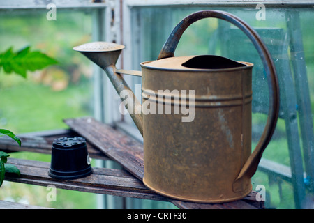 Old fashioned watering can standing in big greenhouse - Stock Photo