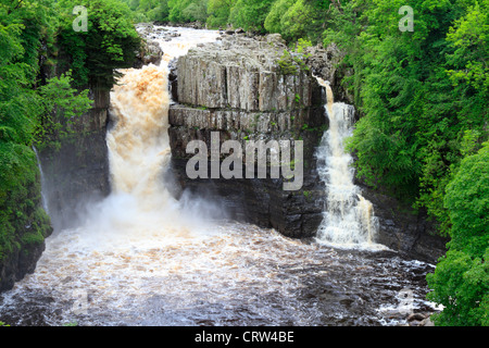 High Force waterfall after heavy rain, River Tees near Middleton in Teesdale, County Durham, England, UK. - Stock Photo