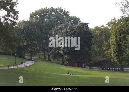 Sunset in Central Park in Summer - Stock Photo