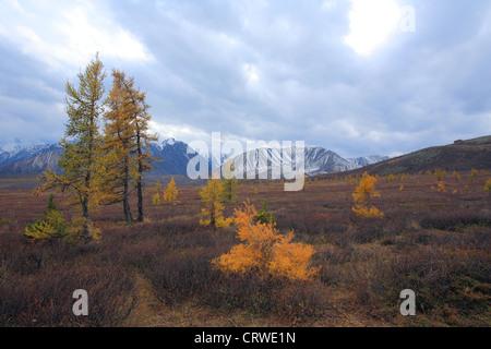 Mountain Altai - Stock Photo