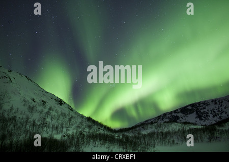 Aurora Borealis The Northern Lights fill the sky at Kvaloya in the Arctic Circle near Tromso, Northern Norway - Stock Photo