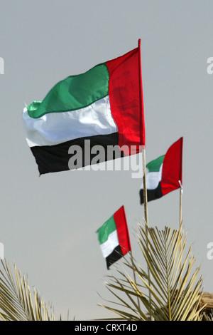 Representative photo of the flag of the United Arab Emirates, Dubai - Stock Photo