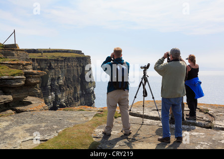 People using binoculars and a telescope to watch Puffins and seabird colony nesting on cliffs at Noup Head Westray - Stock Photo