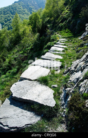 stone boulder paved hiking trail (near village of mergoscia) - canton of ticino - switzerland - Stock Photo