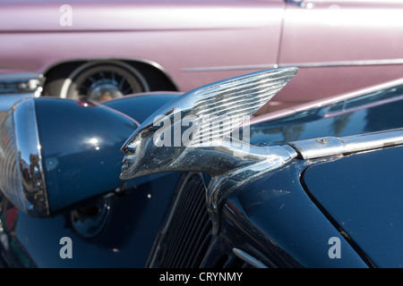 1955 Citroen BL 11 Berline - Stock Photo