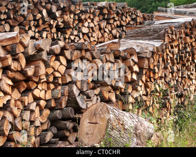 outdooor large stack of firewood
