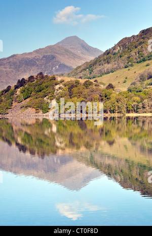 Reflections of Moel Hebog mirrored in Llyn Gwynant Lake in the Nantgwynant Valley Snowdonia National Park Gwynedd North Wales UK