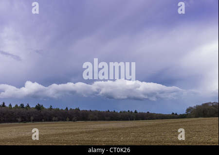 Cloud formation Stratocumulus above trees with Cirrus high above in springtime in Swinbrook in the Cotswolds, Oxfordshire, - Stock Photo