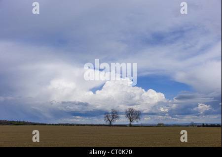 Cloud formation Towering Cumulus (centre) Cumulonimbus (left) and Cirrus at high altitude (right) in the Cotswolds, - Stock Photo